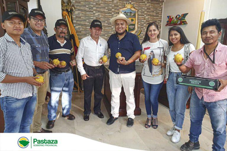 Potenciar la agricultura en Pastaza es impulsar su desarrollo