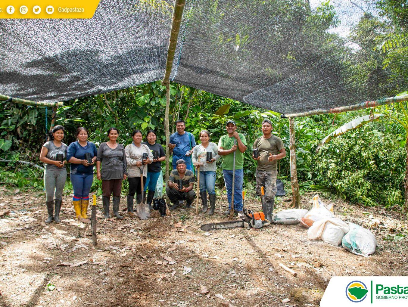 Construcción de un umbráculo destinados a la germinación de semilla de canela.