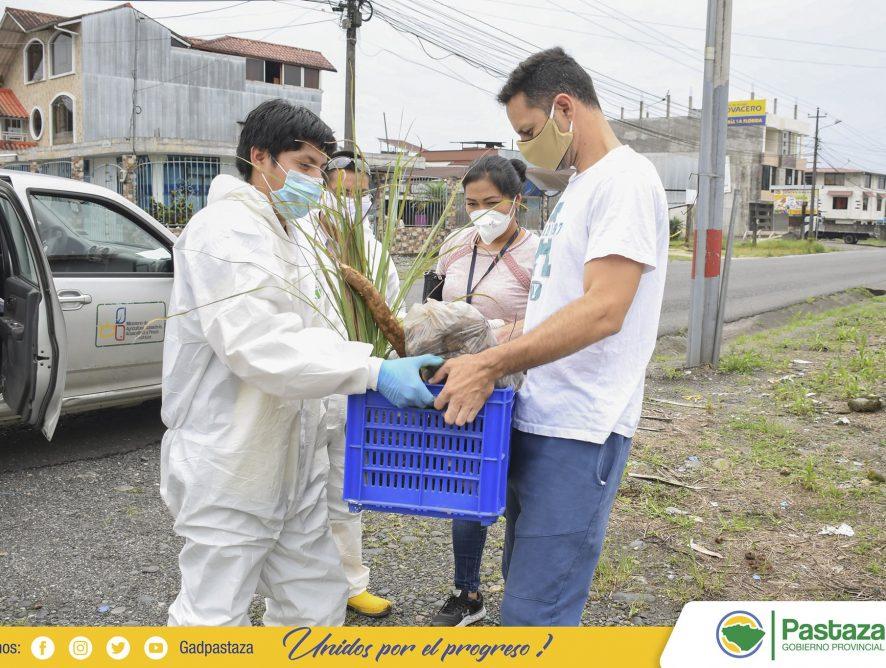 Canasta de Productos Alimenticios de Pastaza.