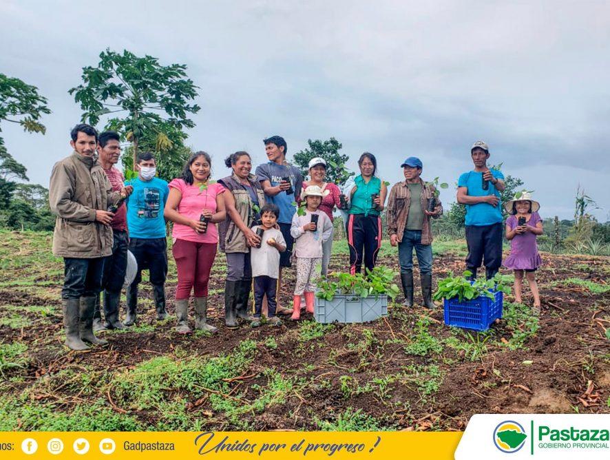 El GADPPz, entrega plantas a beneficiarios del proyecto de Agroecología dentro del componente Agricultura Familiar.