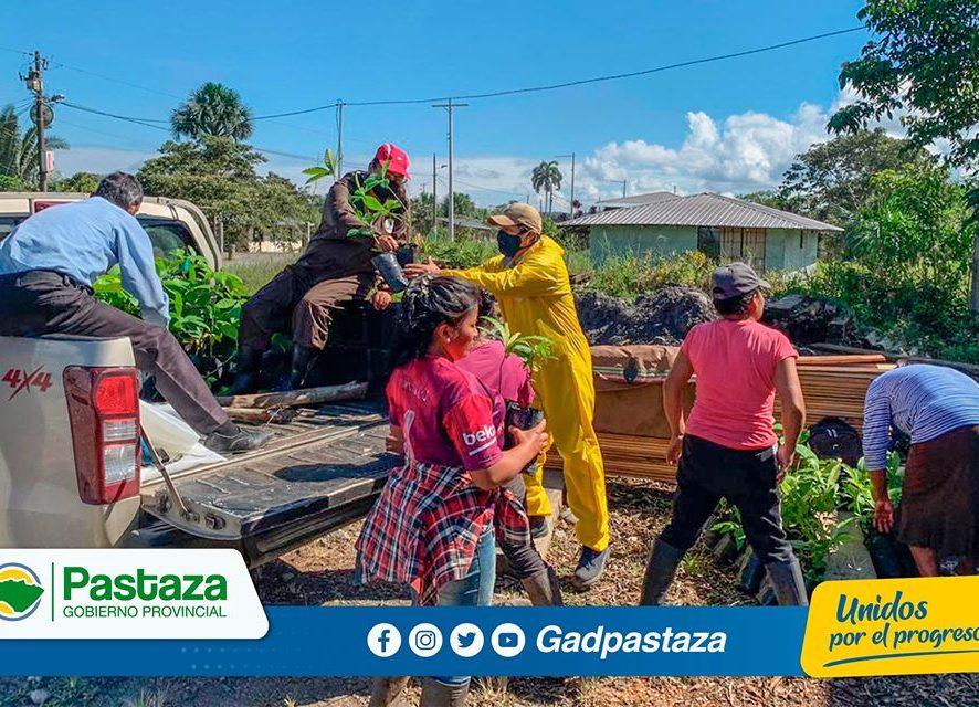 La Prefectura de Pastaza trabaja planificadamente en el fortalecimiento de las las fincas integrales!