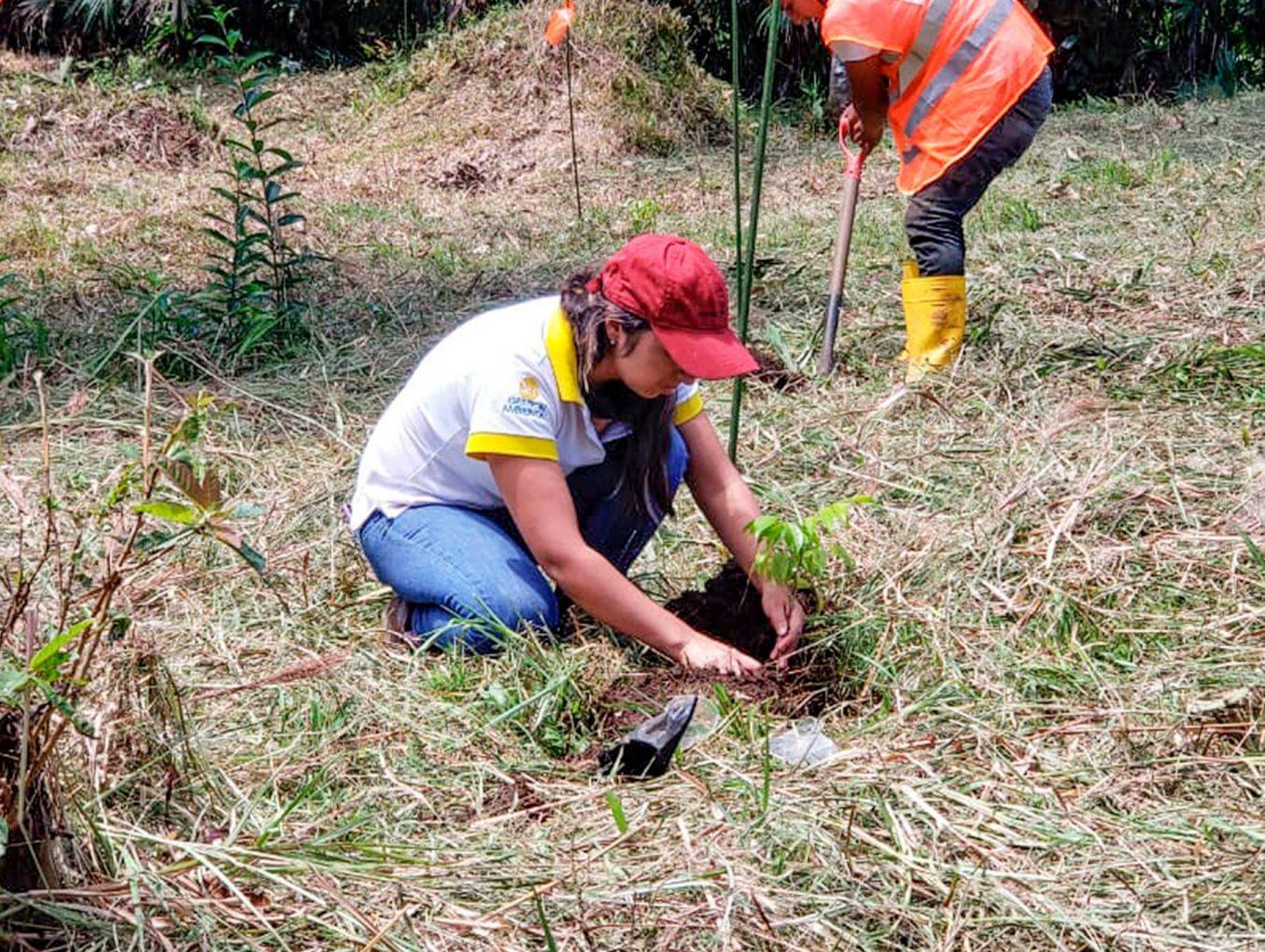 ¡Trabajamos en la conservación medio ambiental mediante la reforestación!