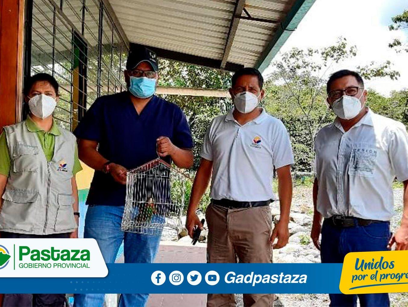 Realizamos trabajos de mantenimiento de nuestro Centro de Rehabilitación Pastaza Selva Viva