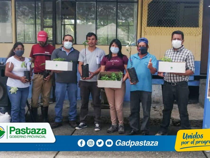 ¡En Fátima entregamos plantas e insumos agrícolas a agricultores!
