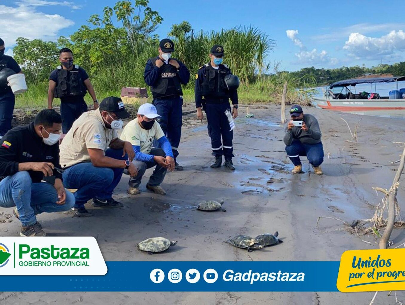 ¡Técnicos de la Dirección de Gestión Ambiental liberaron 33 especímenes de tortugas en Orellana!