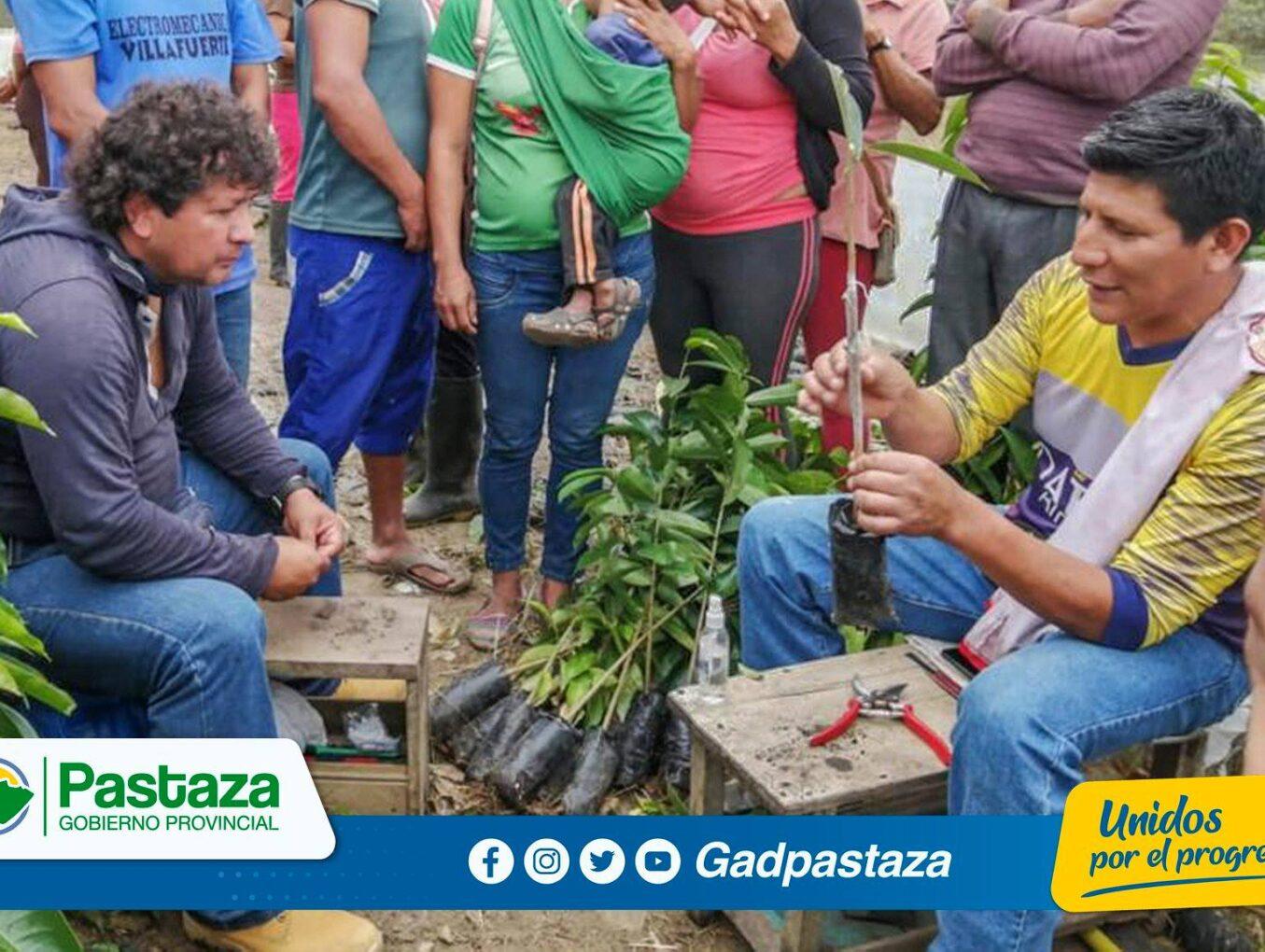 ¡En Arajuno, técnicos del GADPPz capacitan a productores de guanábana!
