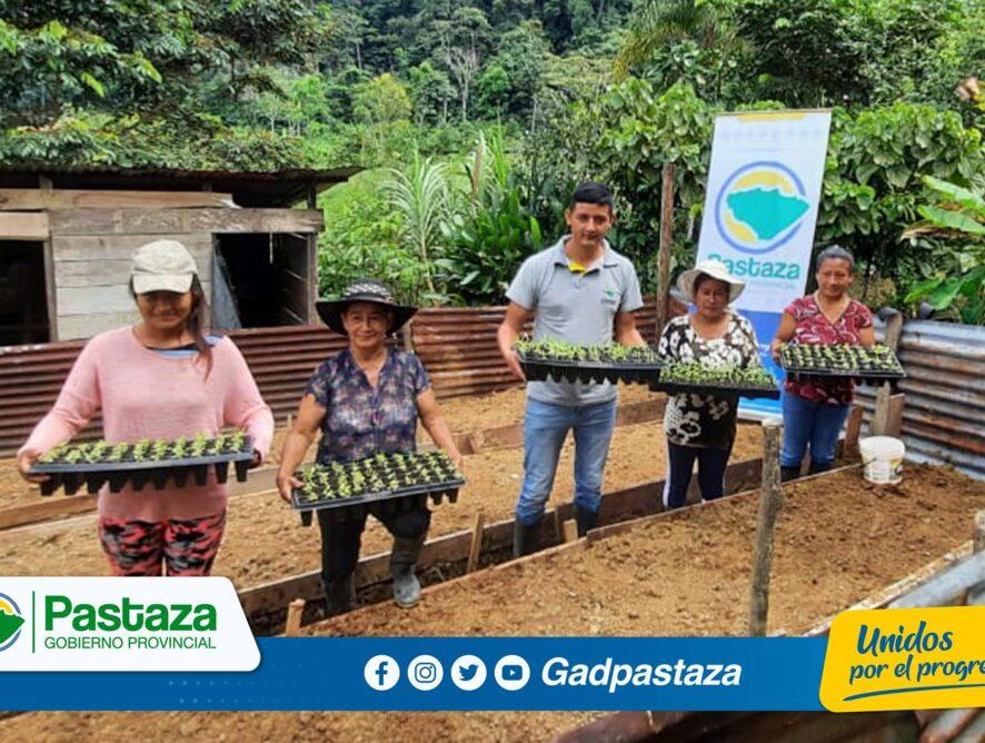 Familias de la parroquia El Triunfo se beneficiaron de la entrega de hortalizas