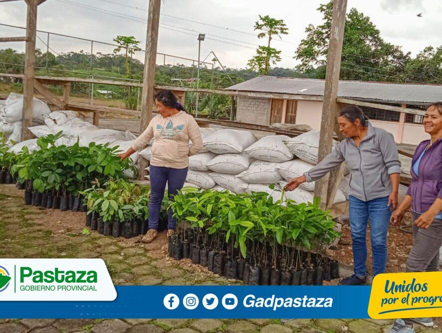 ¡Comunidades de la parroquia Tnte. Hugo Ortíz se beneficiaron de la entrega de plantas!