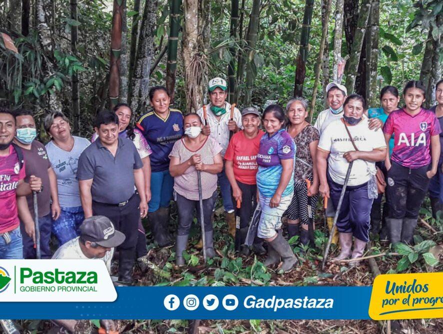 ¡Capacitamos a nuestros agricultores en el cultivo y cuidado del bambú!
