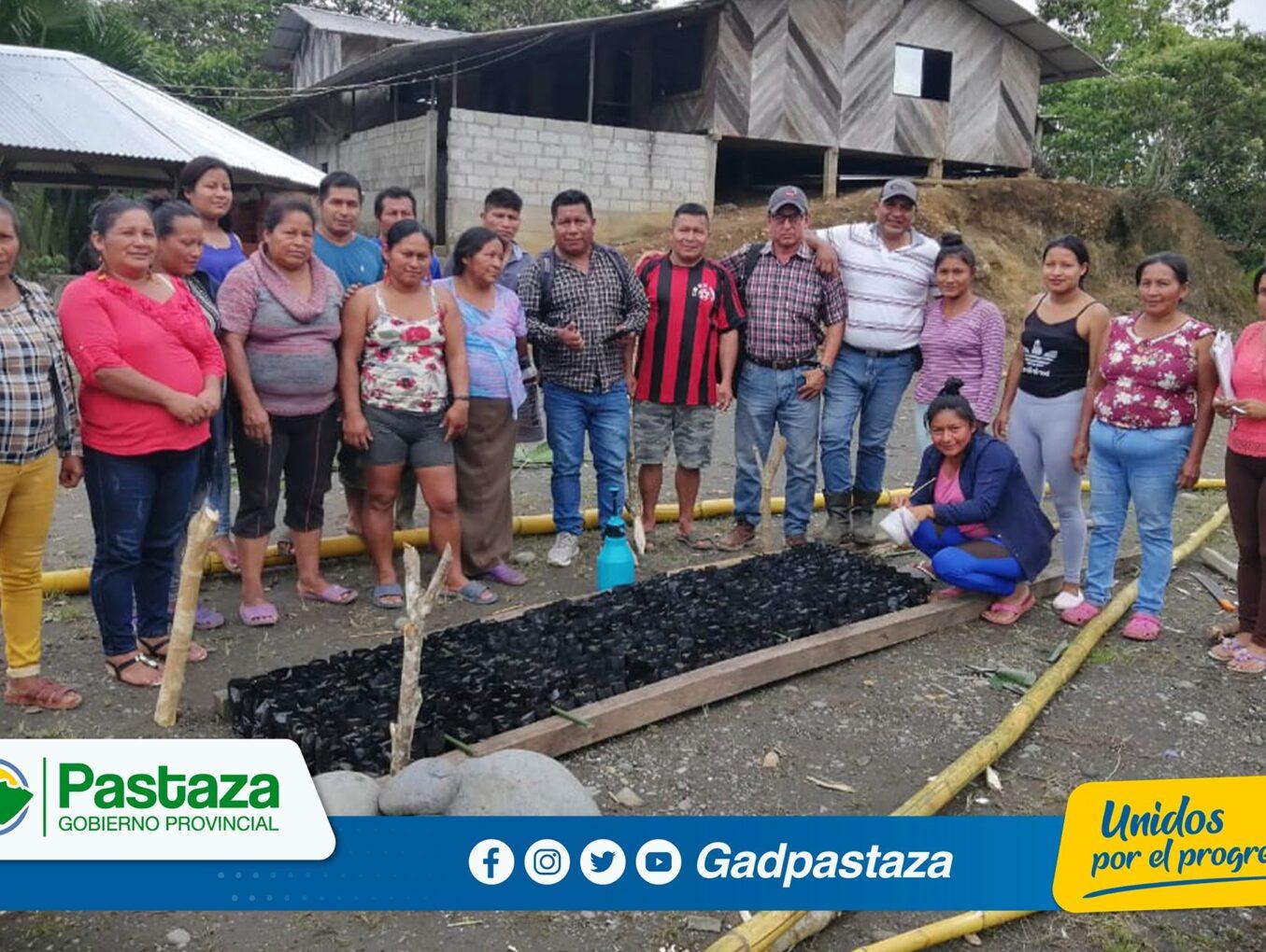 ¡Impulsamos nuevas alternativas de producción agrícola mediante la siembra de balsa!